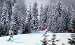 Olympics 2010: Officials disqualify only Armenia finish on Vancouver hills