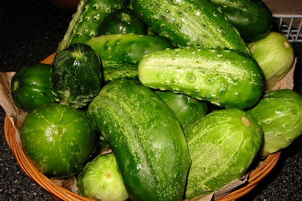 Cucumber killers: Armenia bans import of vegetables from Europe and Turkey