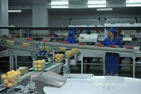 Silver Lining?: Armenia keen on increasing agricultural exports amid Russian sanctions against EU